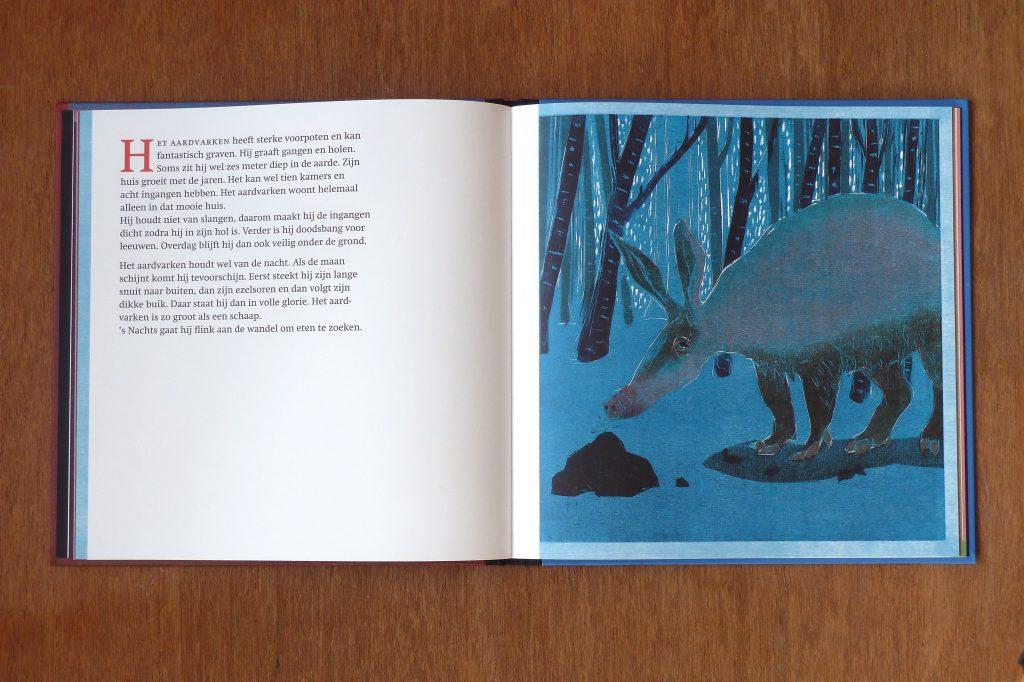 books-daarbuitenslaapteenaap-1