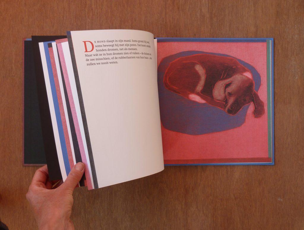 books-daarbuitenslaapteenaap-2