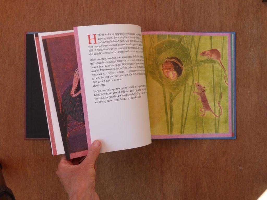 books-daarbuitenslaapteenaap-3